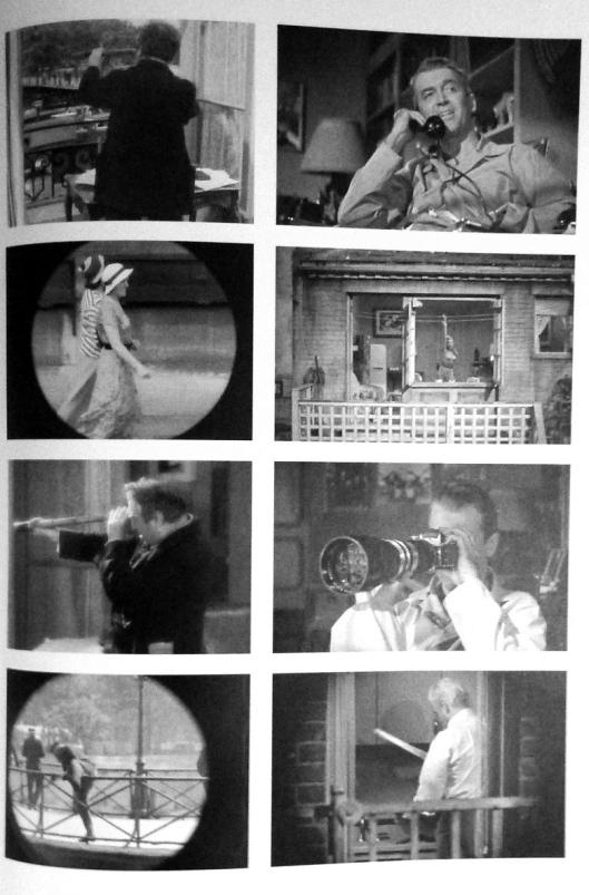 libro-motivos-visuales-del-cine-boudu-salvado-de-las-aguas-la-ventana-indiscreta-renoir-hitchcock