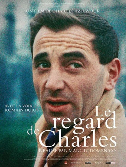 Le regard de Charles-Film directed by Marc Di Domenico