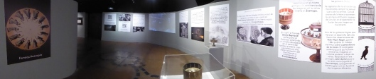 Exposición cine-Centro Historias Zaragoza-2020-Juguetes ópticos-Foto Atmosferacine